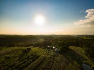 Beccari Farm